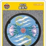 碧南市(A001)のマンホールカード