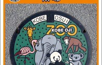 神戸市のアイキャッチ