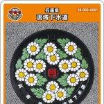 兵庫県(A001)のマンホールカード