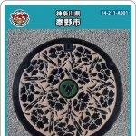 秦野市(A001)のマンホールカード