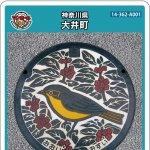 大井町(A001)のマンホールカード
