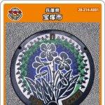 宝塚市(A001)のマンホールカード