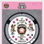 【9月14日~配布再開】名護市(B001)のマンホールカード