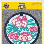【2021年4月25日配布開始】大桑村(A001)のマンホールカード